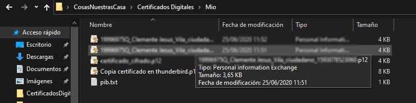 Fichero *p12 para la instalación de un certificado digital en el navegador en sistemas Windows